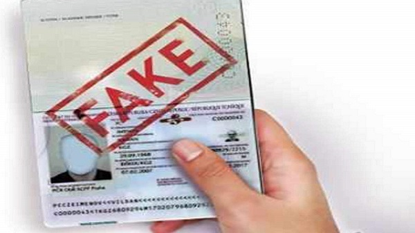 Fake passport visa